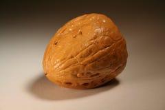 грецкий орех Стоковое Изображение RF