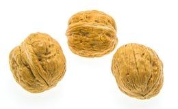 Грецкий орех i Стоковое Фото