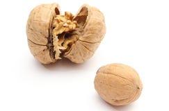 2 грецкого ореха - всего и раскрытого на белой предпосылке Стоковая Фотография