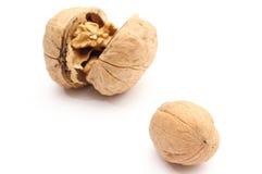 2 грецкого ореха - всего и раскрытого на белой предпосылке Стоковые Изображения