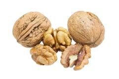 2 грецкого ореха в их раковине и несколько обстреливали крупный план стерженей Стоковое Изображение