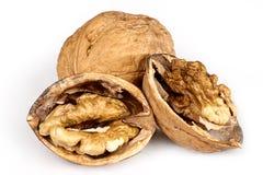 3 грецкого ореха в раковине и прерванного на белой предпосылке стоковые изображения rf