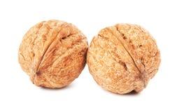 2 грецкого ореха в раковине Стоковое фото RF