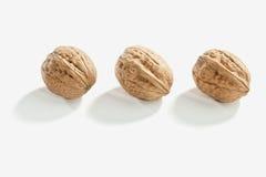 3 грецкого ореха в ряд Стоковое Изображение