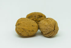 3 грецкого ореха изолированного на белой предпосылке Стоковая Фотография