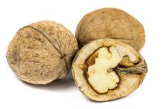 3 грецкого ореха изолированного на белом макросе предпосылки Стоковое фото RF