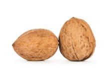 2 грецкого ореха изолированного на белой предпосылке Стоковые Изображения RF