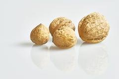 4 грецкого ореха отражения Стоковое фото RF