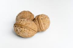 3 грецкого ореха Стоковые Изображения