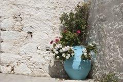 Греческая ваза с цветками Стоковое Изображение