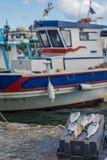 Греческая рыбацкая лодка Стоковое Изображение RF
