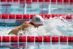 Греческий пловец брасса во время седьмой конкуренции заплывания Милана di citta Trofeo Стоковая Фотография