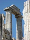 2 греческих ионных столбца, висок на Didyma, Турции Стоковая Фотография