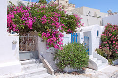Греческое патио лета в Santorini Стоковые Изображения