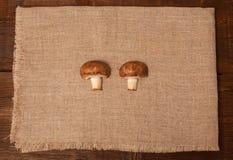 2 гриба на салфетке Стоковая Фотография