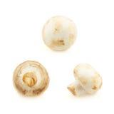 3 гриба champignon Стоковое Изображение RF