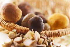 Грибы деревянной корзины польностью свежие Стоковая Фотография RF