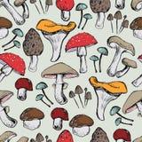 грибы делают по образцу безшовное Стоковые Изображения
