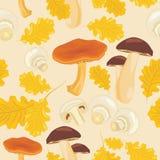 Грибы и листья дуба Безшовная предпосылка Стоковое Фото