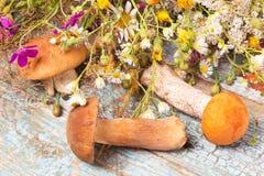 Грибы и полевые цветки на таблице стоковые изображения