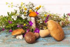 Грибы и полевые цветки на таблице стоковая фотография