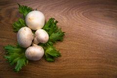 Грибы и салат Стоковая Фотография RF