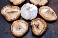 Грибы и чеснок шиитаке Стоковое Фото