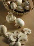 грибы корзины Стоковое Изображение RF