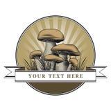 грибы логоса Стоковые Фотографии RF