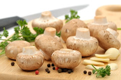 грибы подготовляя стоковые фото