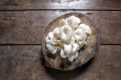 Грибы устрицы на деревянной предпосылке, взгляд сверху Стоковые Фото