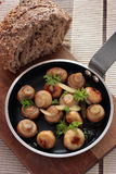 грибы чеснока Стоковая Фотография