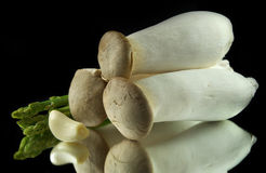 Грибы, чеснок и спаржа Стоковая Фотография RF