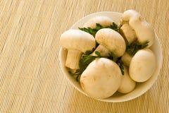 грибы шара Стоковая Фотография