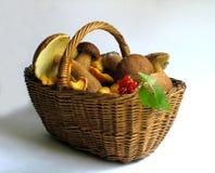 грибы ягод корзины полные стоковое фото rf
