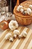 грибы champignon Стоковые Фотографии RF