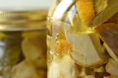 Грибы Porcini marinated в опарниках Стоковое фото RF