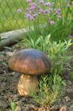 гриб деревянный Стоковые Изображения RF