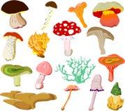 гриб икон Стоковое Фото