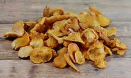 Гриб лисички на деревенском деревянном столе Сырцовая свежая предпосылка гриба лисички Стоковые Изображения RF