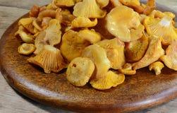 Гриб лисички на деревенском деревянном столе Сырцовая свежая предпосылка гриба лисички Стоковая Фотография