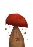 гриб подосиновика edulis Стоковая Фотография
