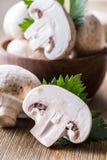 гриб Чемпионы величают в различных положениях с украшением травы стоковые изображения rf