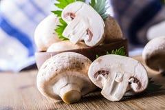гриб Чемпионы величают в различных положениях с украшением травы стоковая фотография rf