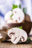 гриб Чемпионы величают в различных положениях с украшением травы стоковое изображение