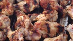 Гриль барбекю крылов и фрикаделек цыпленка сток-видео