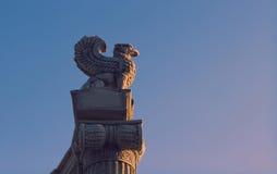 грифон Стоковая Фотография