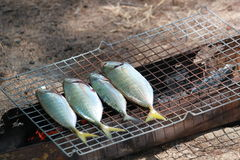 Гриль рыб Стоковые Фото