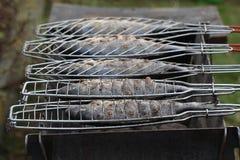 Гриль рыб Стоковые Изображения
