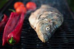 Гриль сырых рыб Стоковая Фотография